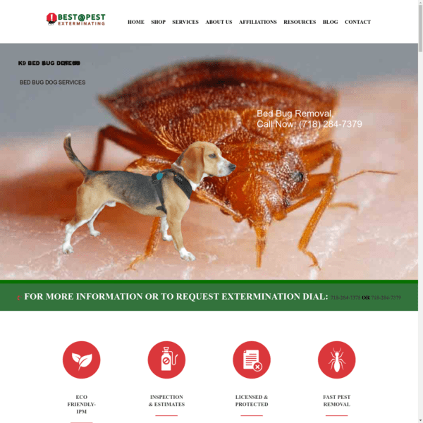 Best Pest Control Extermination Services Company NYC