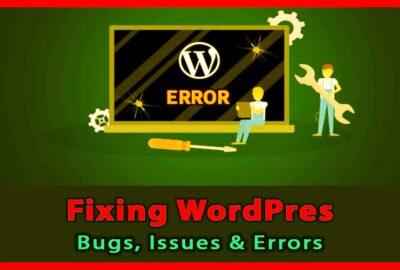 fix WordPress issues services